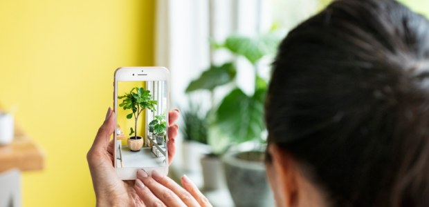 Intratuin lanceert Augmented Reality app voor kamerplanten